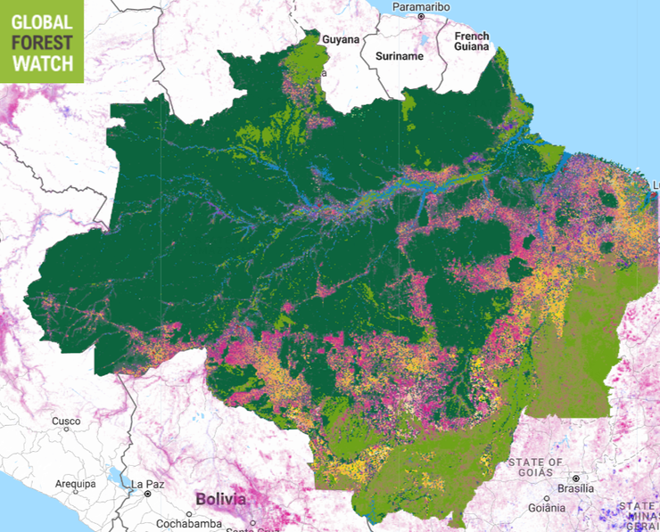 Tree cover loss (pink) and gain (purple) 2000-15, with Brazilian Amazon land cover types.